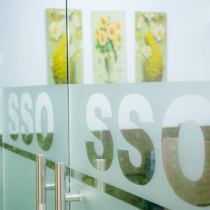 Chụp hình sự kiện - Giới thiệu công ty SSO